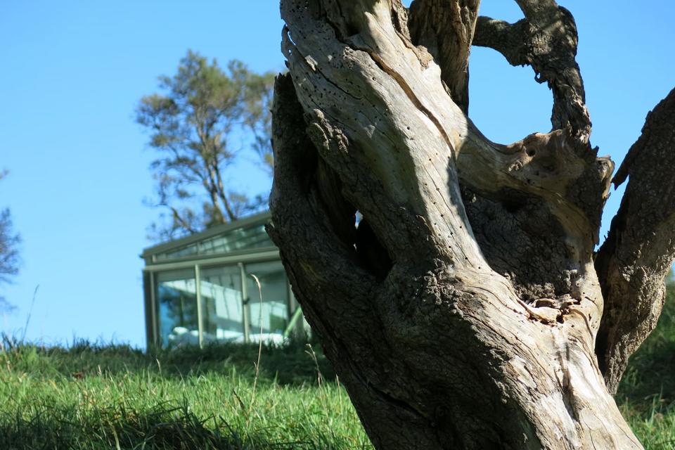 خانه شیشه ای زیبا و مجهز در دل طبیعت در نیوزیلند + تصاویر