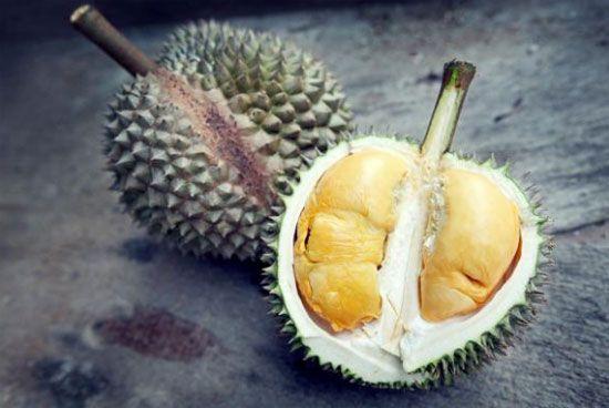 عجیب ترین غذاها در دنیا + عکس