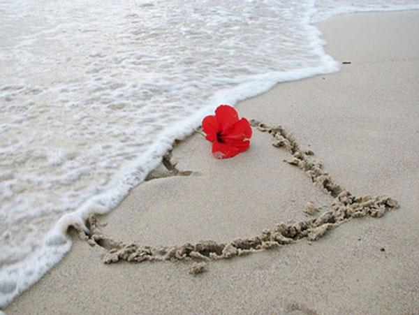 عکس های قلب عاشقانه و رمانتیک