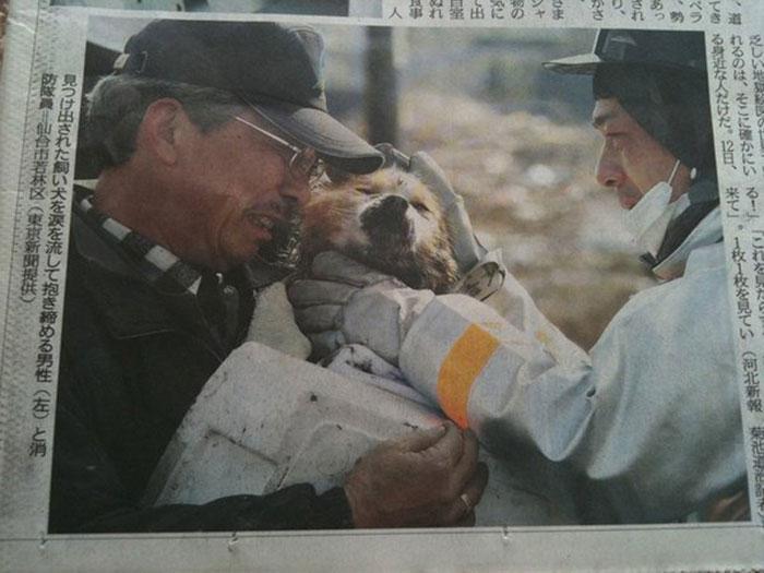 سگی که پس از سونامی ژاپن 2011 به صاحبش رسید