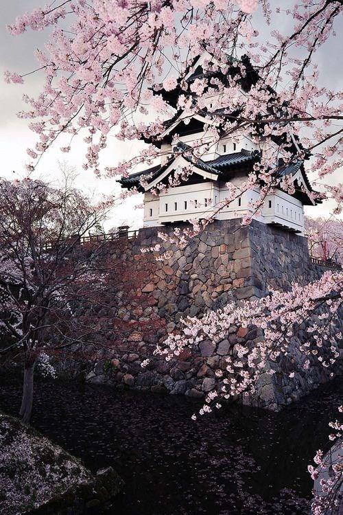 قلعه هیروساکی ژاپن
