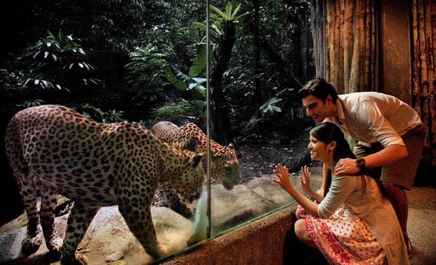 عکس های خیره کننده از سنگاپور