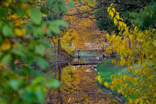 عکس های بسیار زیبا و خیره کننده از طبیعت پاییزی