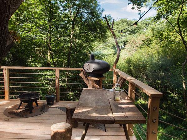 خانه ی درختی لوکس مجهز به سونا، وان آب گرم و سرسره