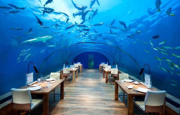 رستوران ایتا، مالدیو