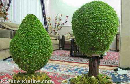 عید نوروز امسال، سبزه درختی ، درست کنیم