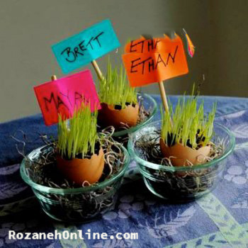 سبزه تخم مرغی بسیار زیبا و شیک