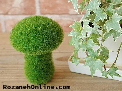 درست سبزه درختی نمونه سبزه های زیبا و ترفند درست کردنشان
