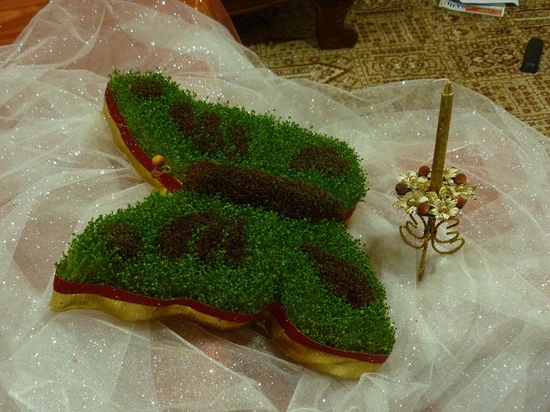 سبزه قالبی را چگونه درست می کنند؟