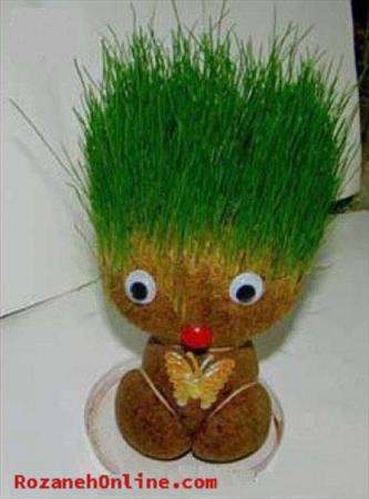 سبزه ی عروسکی را چگونه سبز کنم؟