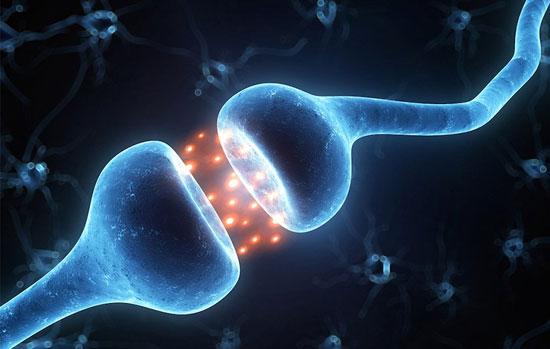 تاثیر ژن آلزایمر از دوران کودکی