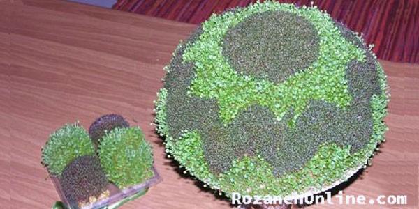 سبزه دورنگ و روش سبز کردن آن با دو روش