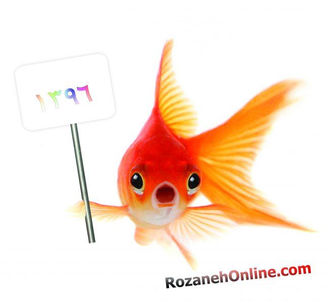 ماهی قرمز سفره هفت سین و ویژگی های آن