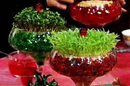 پرورش سبزه ی عید نوروز با استفاده از خاک ژله ای را بیاموزیم