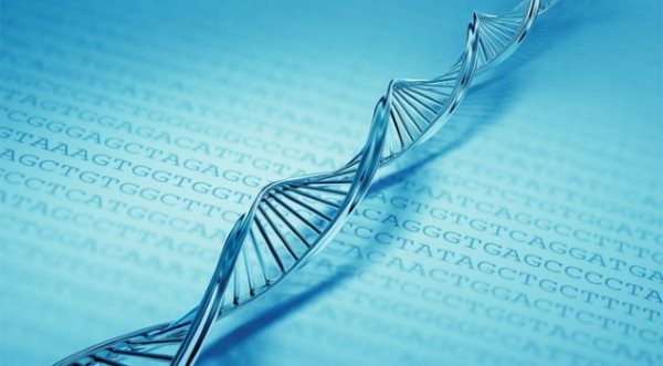 تست DNA صحیح تر است یا آمینوسنتز ؟