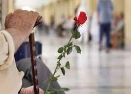 چرا سالمندان توان جنسی خود را از دست می دهند؟