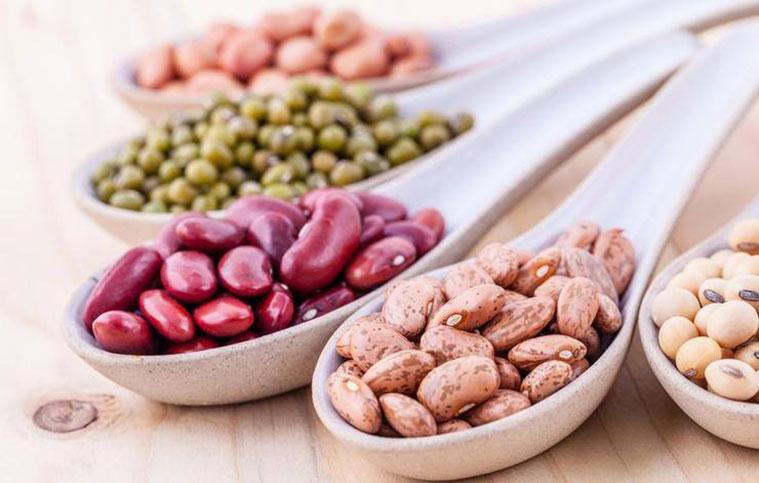فواید مصرف غذاهای پروتئین بالا