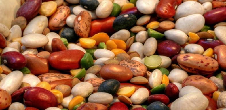 کاهش  کلسترول بد خون با لوبیا