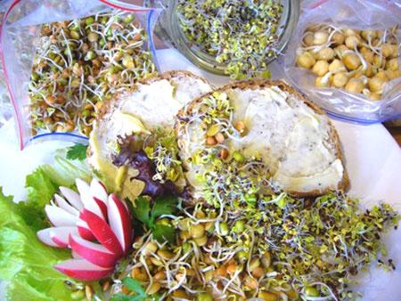 آموزش پخت غذای مغذی سالاد کلم با نخود و پنیر توفو