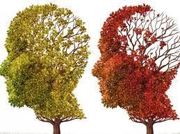 کاهش زوال عقل با بی تحرکی و کم کاری