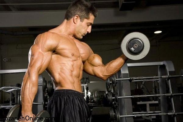 روش عضله سازی اصولی با انجام حرکات ورزشی زیر