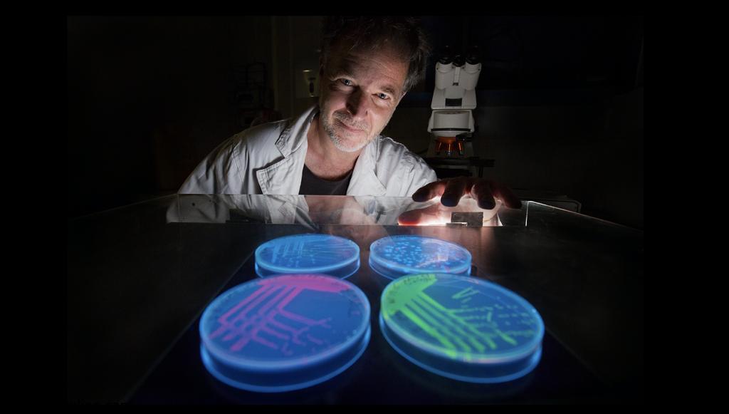 درمان مقاومت آنتی بیوتیکی با کشف یک ژن