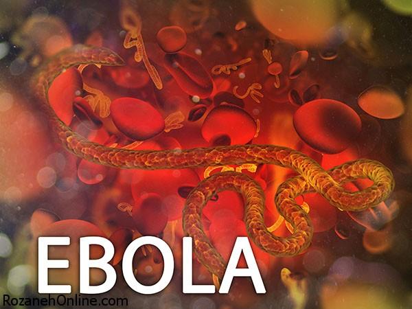یافته های جدید در مورد ابولا