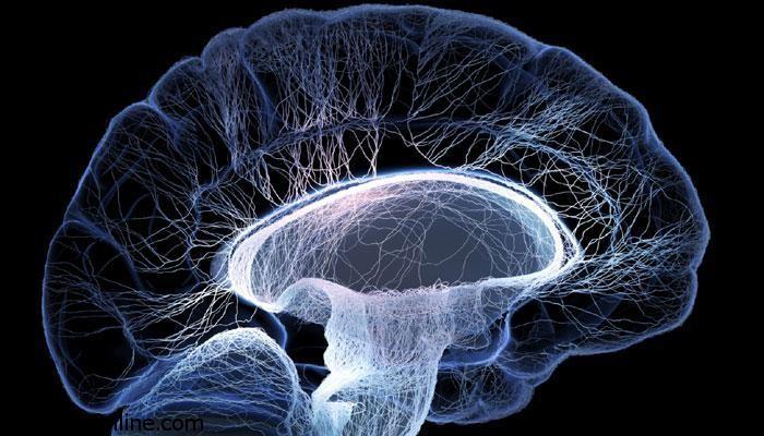 مبتلا شدن به آلزایمر با رسوبات چربی در مغز