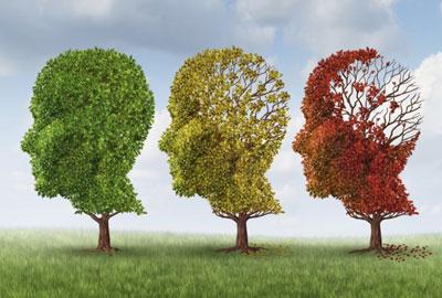 از آنزیم محافظ مغز چه میدانید؟