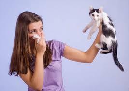چرا در بین زنان بیماری آسم رایج تر است؟