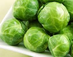 کلم بروکسل گیاهی حاوی پروتئین و چربی