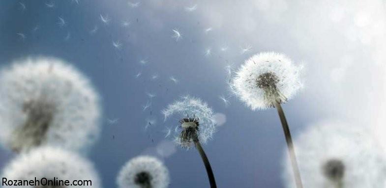 ارتباط آلرژی با بیماری کرون