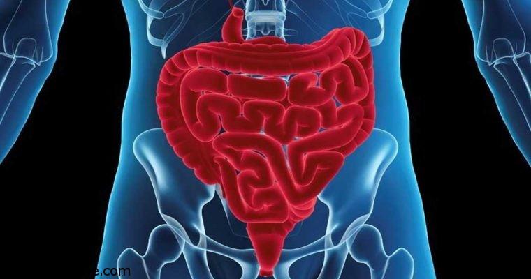 سرطان روده بزرگ و این 6 نشانه پنهان