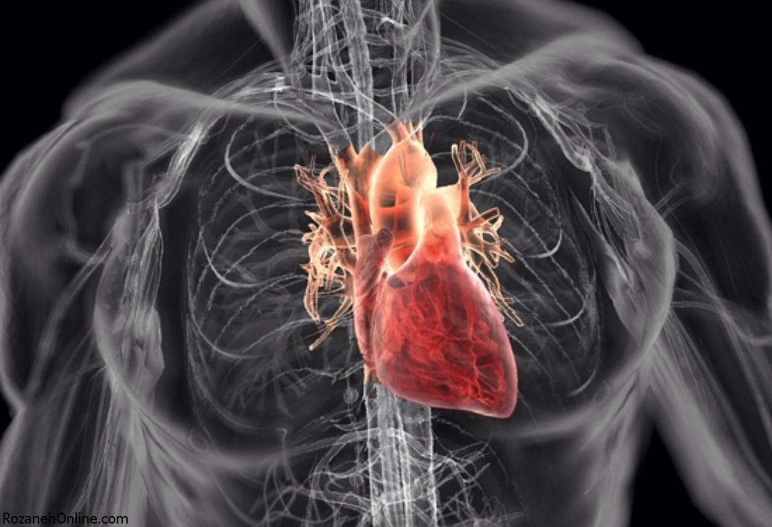 ارتباط سن قلب با بیماری های قلبی
