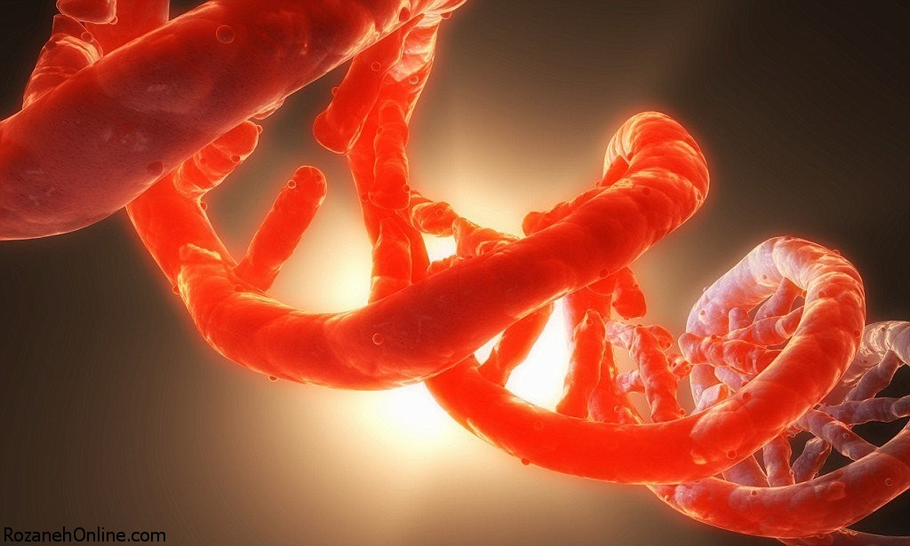 بررسی ژنتیک کارمندان شرکت APPLE