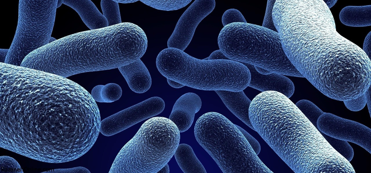 واکنش باکتریهای روده با داروهای شیمی درمانی