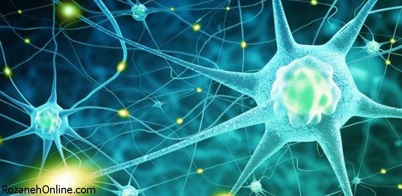 ارتباط بیماری پارکینسون با سرطان پوست