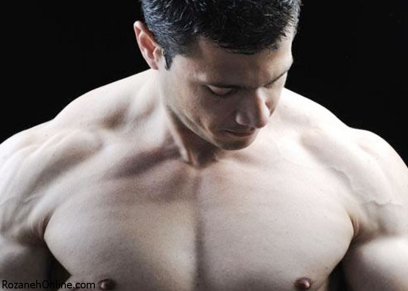 نکات خواندنی درباره عضلات بدن