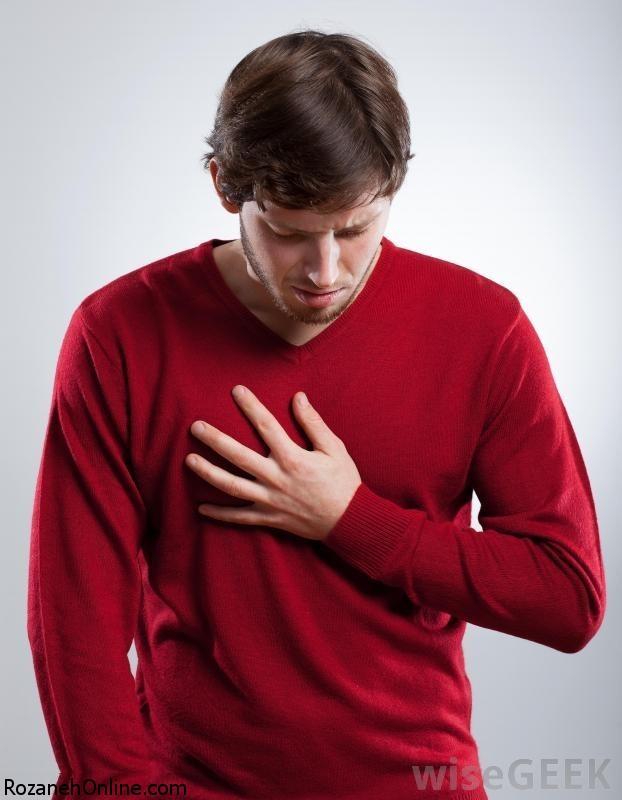 عضلات کمر و سینه در کجا قرار دارند؟