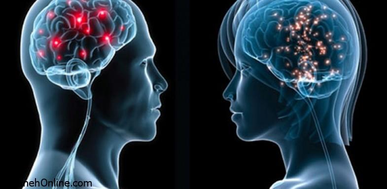 فرق عملکرد مغز در خانم ها و آقایان