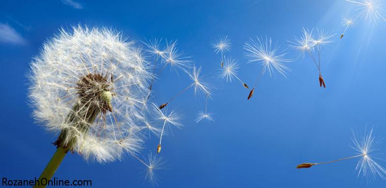 کشف داروی مشترک برای درمان آسم