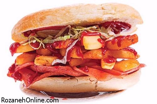 طرز تهیه ساندویچ مناسبتی روز مادر با ماهی