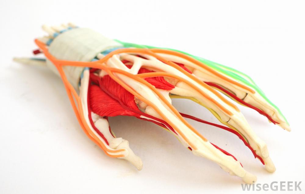 ورزش و ویتامین ب برای درمان پارستزی