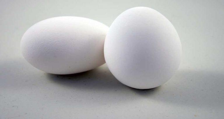 پیشگیری از ابتلا به دیابت نوع ۲ با استفاده از تخم مرغ