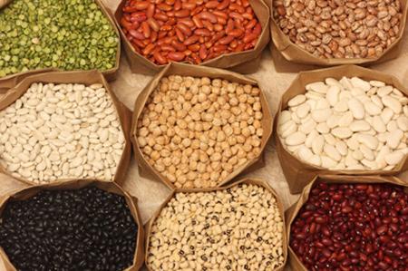 بهترین تامینکنندههای پروتئین بدن
