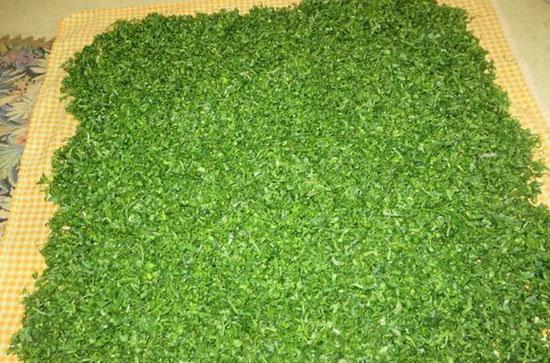 طریقه خشک کردن سبزی در ماکروفر در مدت زمان 22 دقیقه