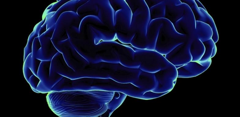 تاثیر پوسیدگی دندان بر سکته مغزی
