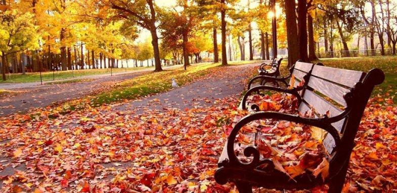 شیوع بیماری روماتیسم در فصل پاییز
