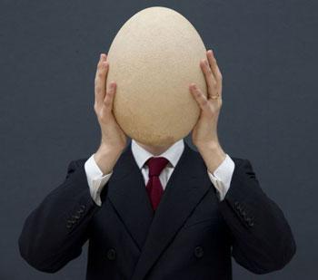 معمای سقوط تخم مرغ از ساختمان بهمراه راه حل های آن