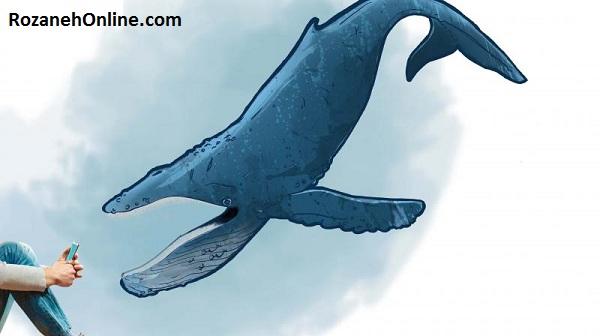 عکس های بازی نهنگ آبی که به نهنگ سفید هم معروف است